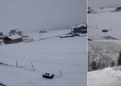 कश्मीर में जारी है बर्फबारी, एलओसी के पास की चौकियों पर हिमस्खलन से 5 जवान लापता